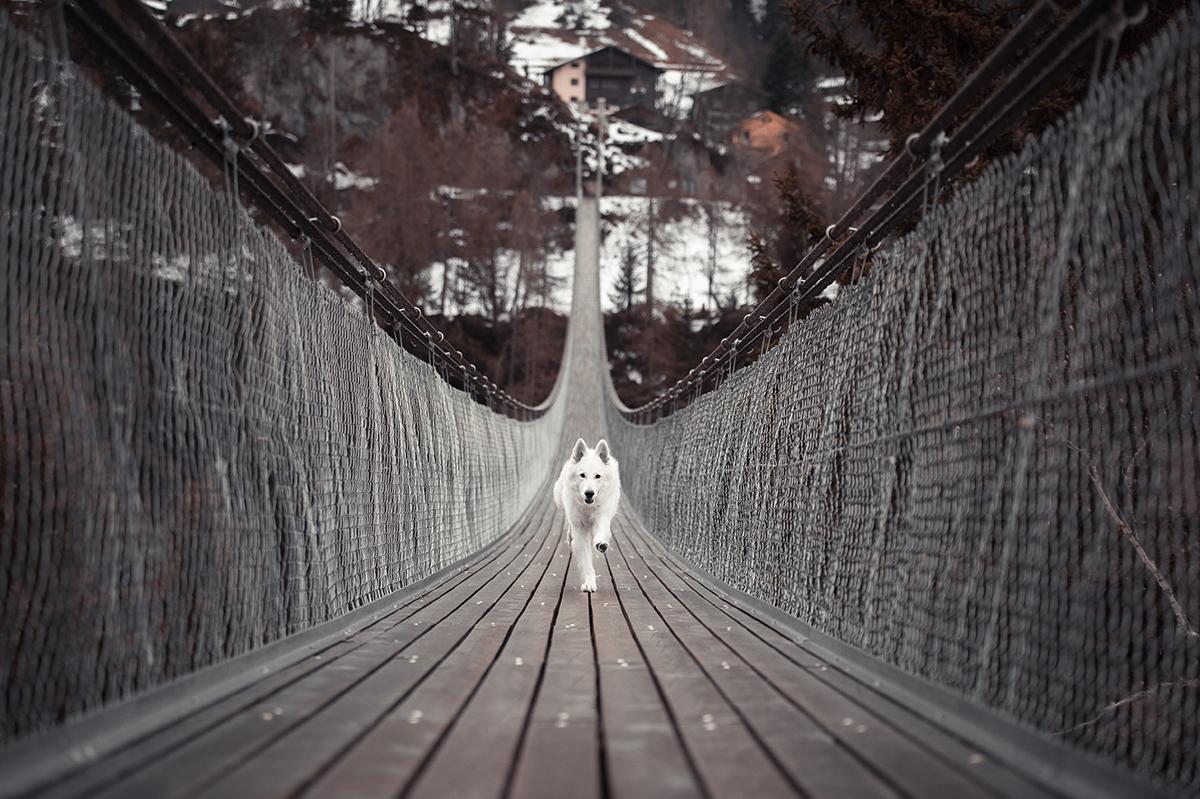 Indio-on-a-bridge