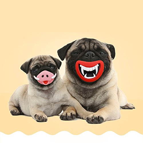 Oinky & Fangy Dog Squeaky Toys Funny Face Toys pug demo