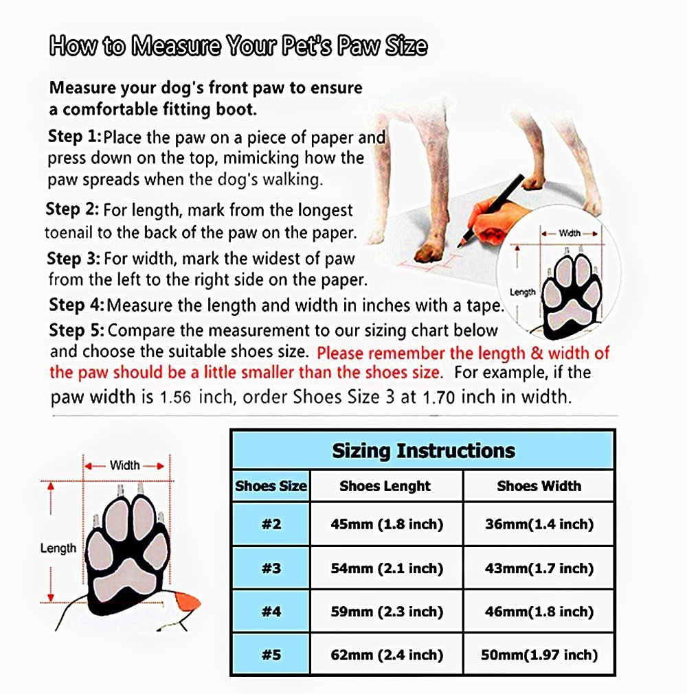 Puppy-Canvas-Sport-Shoes-Sneaker-Boots-size-chart