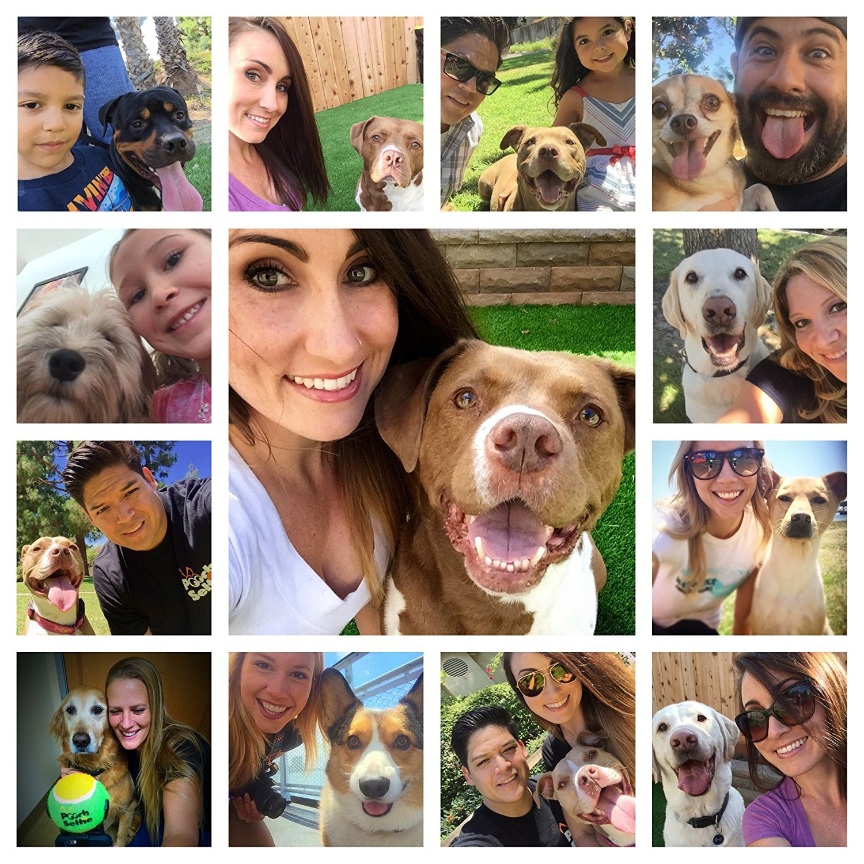 The-Original-Dog-Selfie-Stick-collage