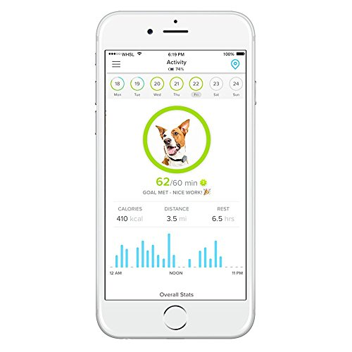 Whistle 3 GPS Pet Tracker & Activity Monitoring