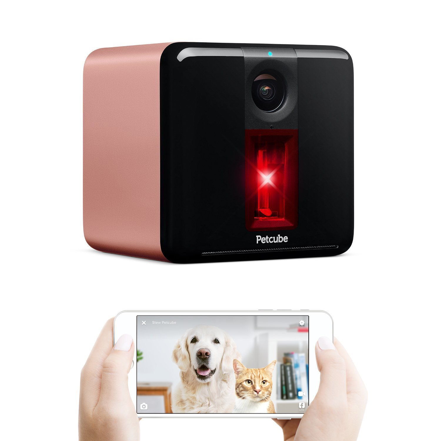 Petcube-laser-toy-rose-gold