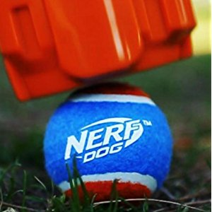Say Good-Bye To Slobbery Tennis Balls With The Nerf Ball Launcher With Hands Free Pickup
