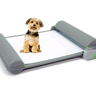 Self-Cleaning Automatic Indoor Dog Potty
