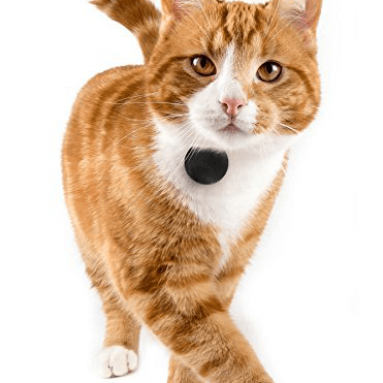 TabCat Pet Tracking Collar Cat Locator